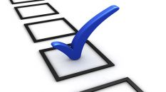 Do IT Professionals support online voting?